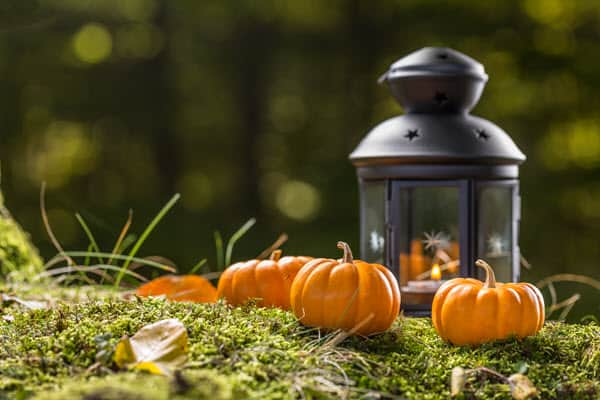 lantern lighted centerpiece for backyard fall lighting