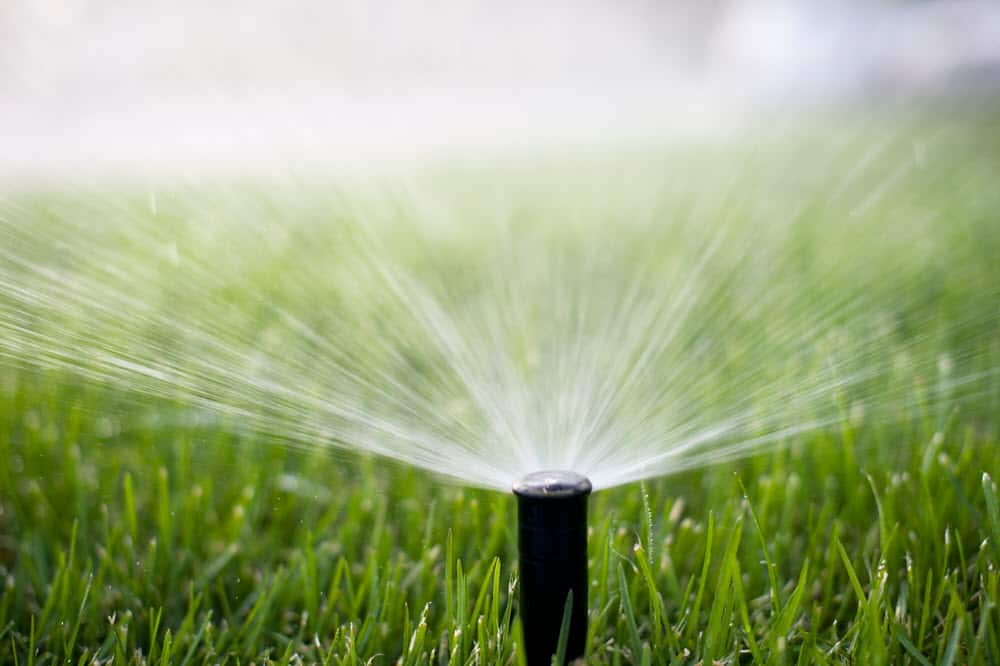 types of sprinkler heads