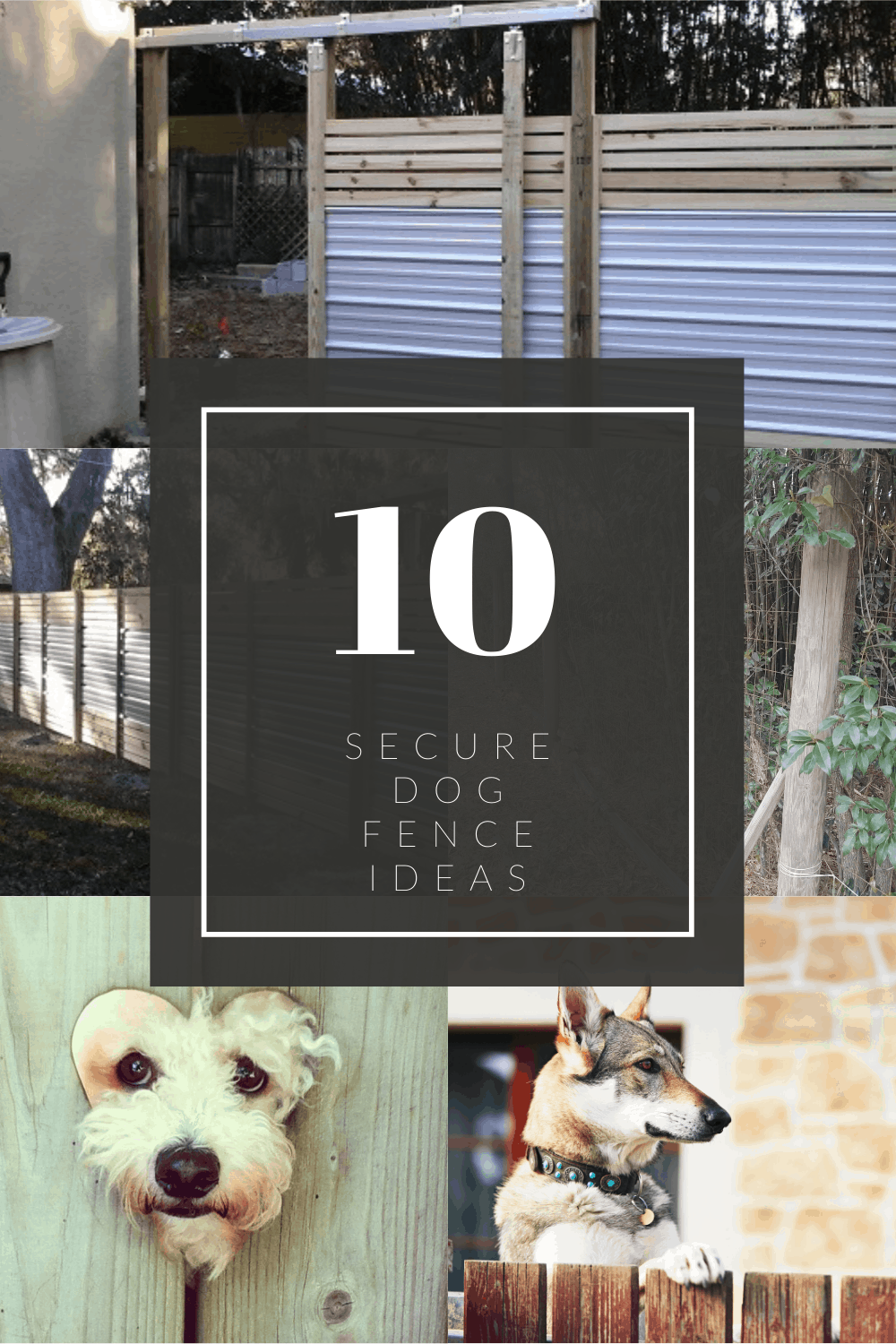 Picture of: 10 Secure Dog Fence Ideas Backyardscape