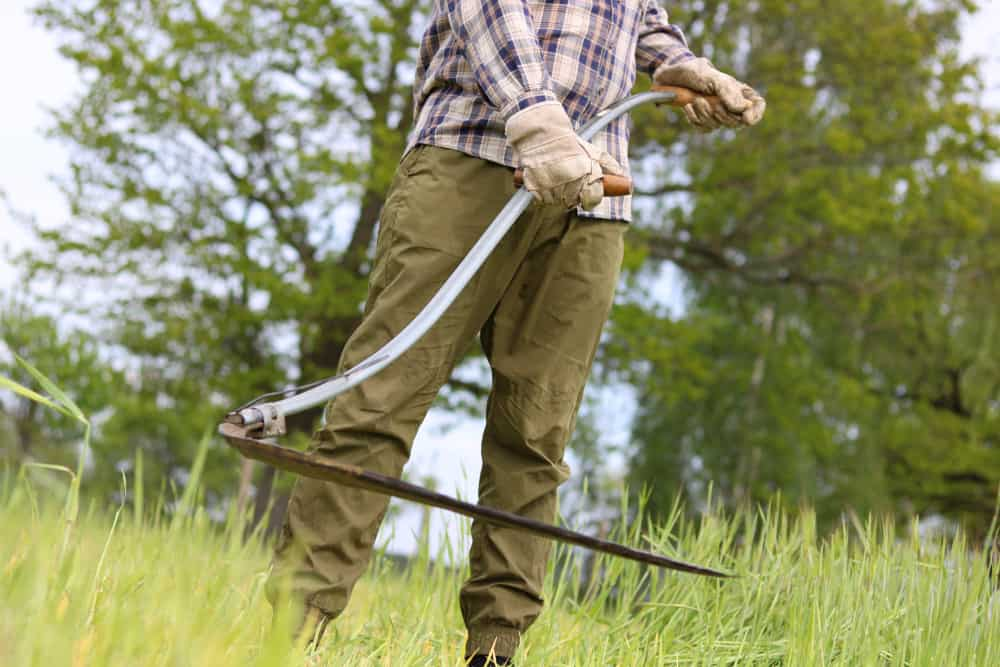 scythe used to cut grass