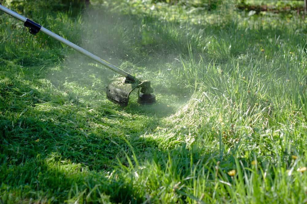 string trimmer cutting grass