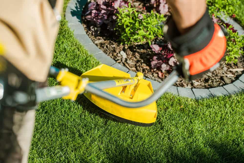weedeater cutting grass