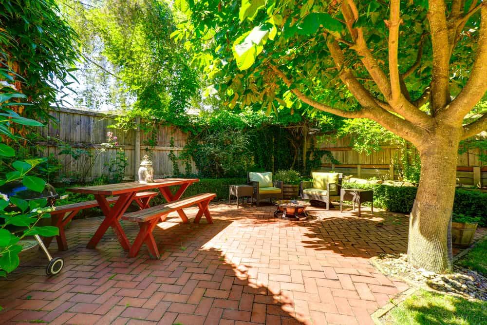 tree shade for backyard