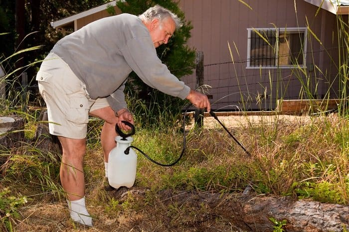 man spraying weeds to kill them