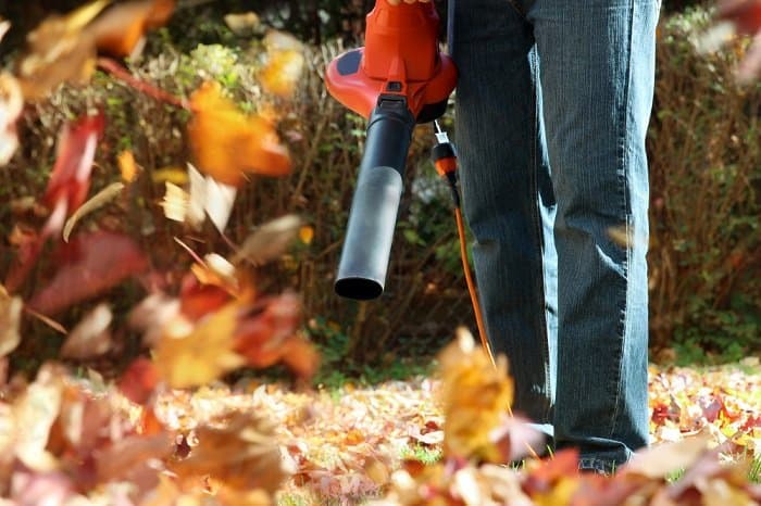 a person in a backyard using a leaf blower to blow leaves in the fall