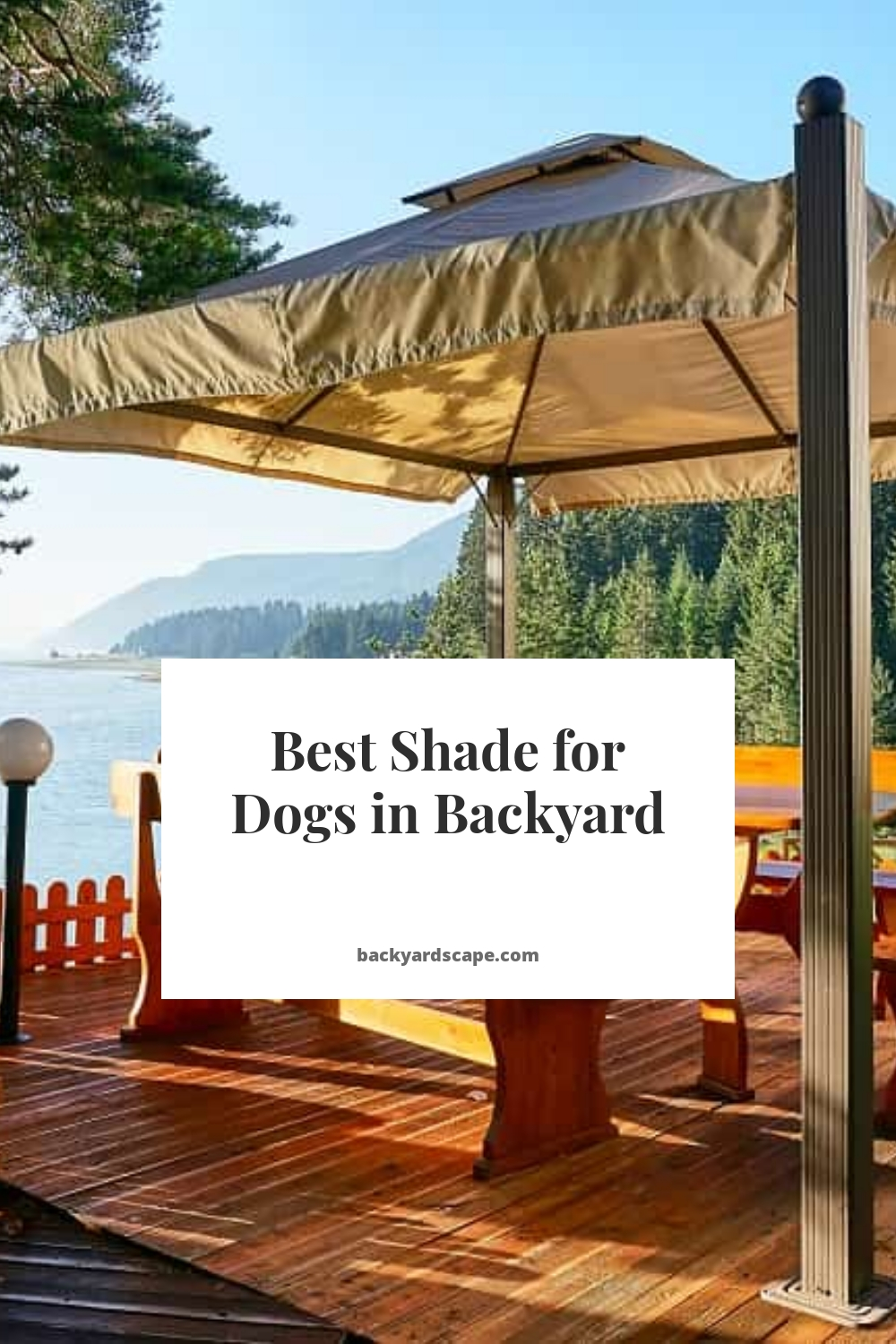 Best Shade for Dogs in Backyard